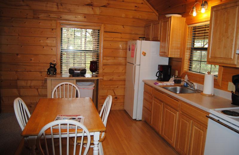 Cabin kitchen at Cabin Fever Resort.
