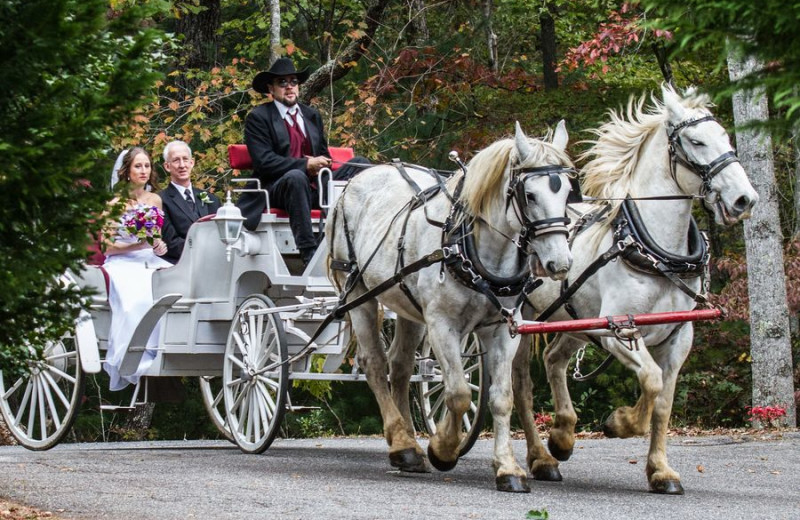 Wagon ride at Forrest Hills Resort.