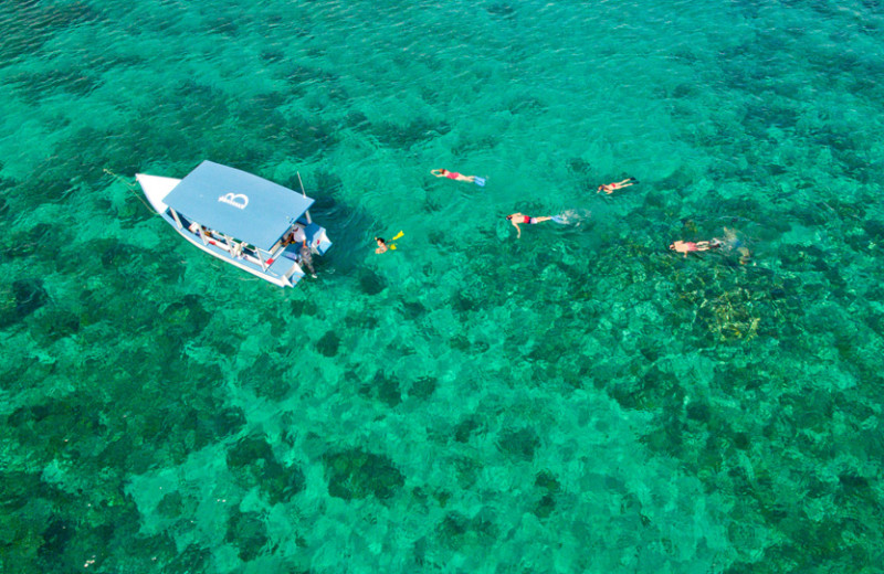 Snorkeling at Bluefields Bay Villas.