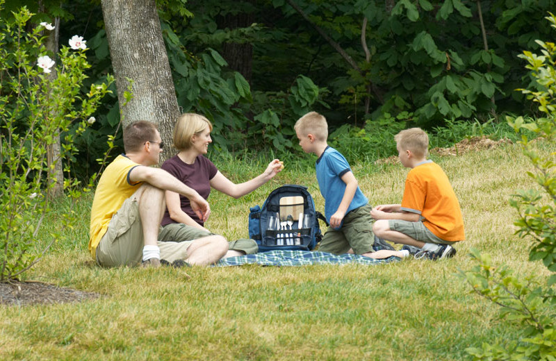Family picnic at House Mountain Inn.