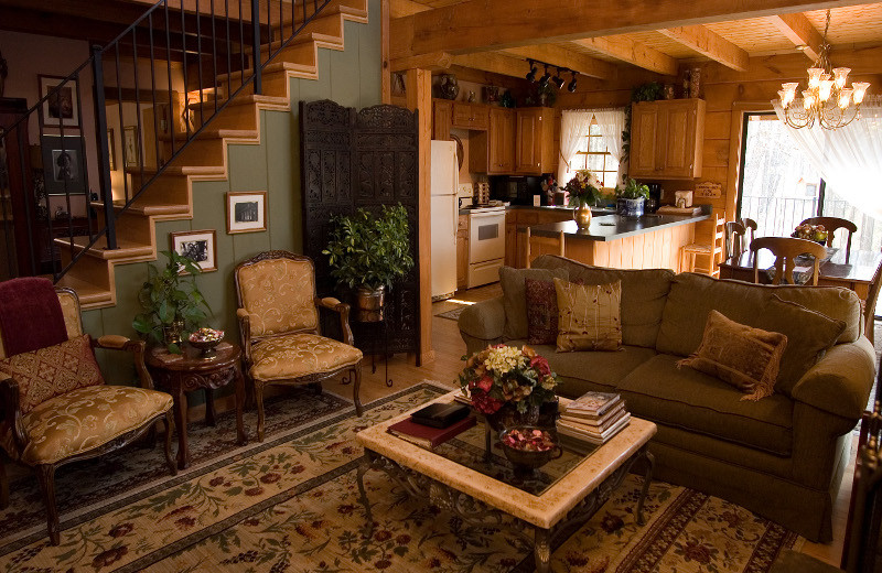 Cabin living room and kitchen at Azalea Falls Lodge.