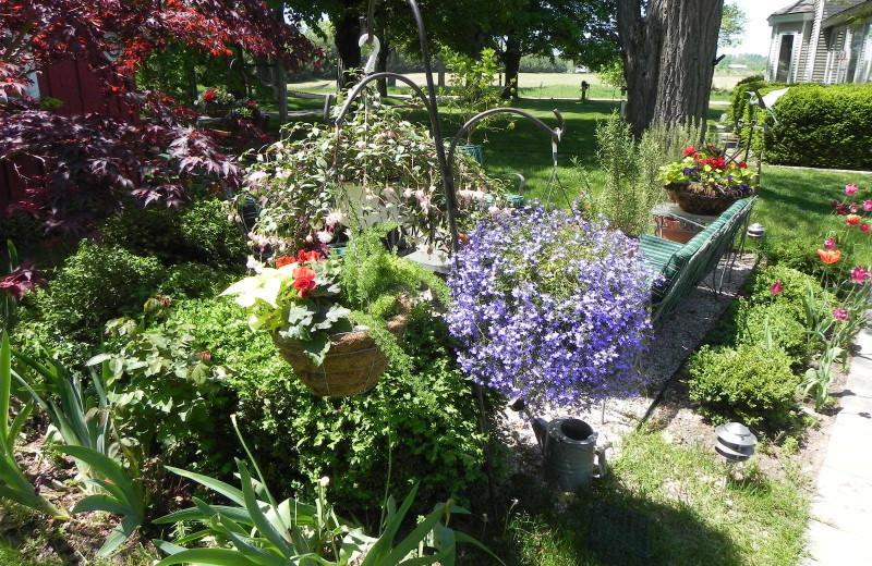Garden at Sleeping Bear Bed & Breakfast.