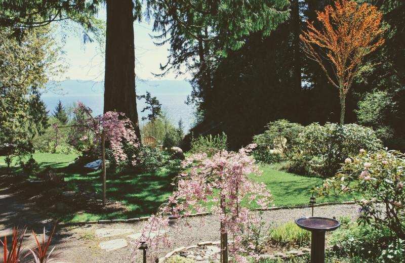 View from Ocean Wilderness Inn