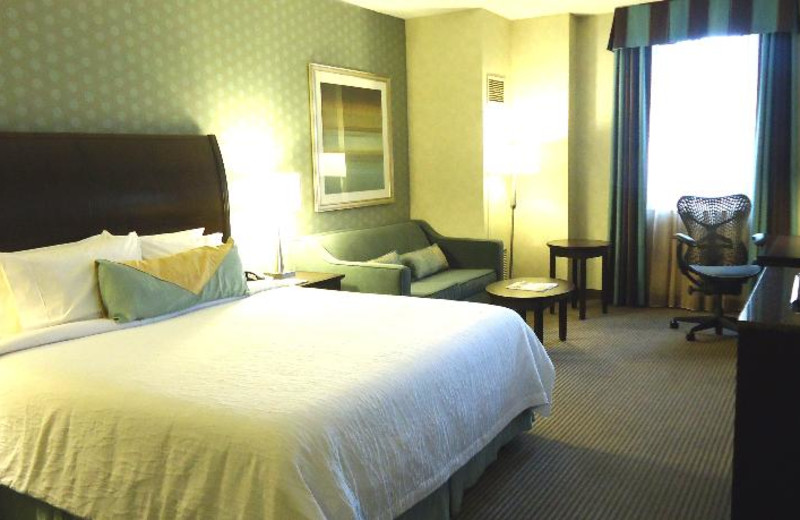 Guest Room at the Comfort Suites City Centre