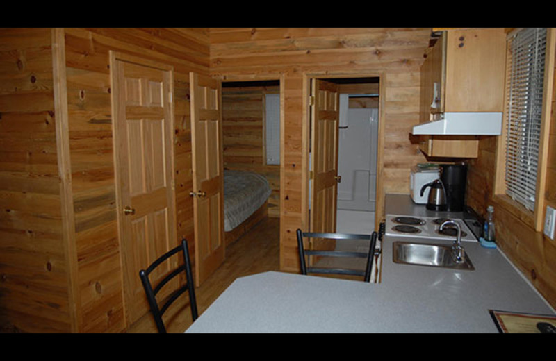 Cabin interior at Sourdough Lodge.