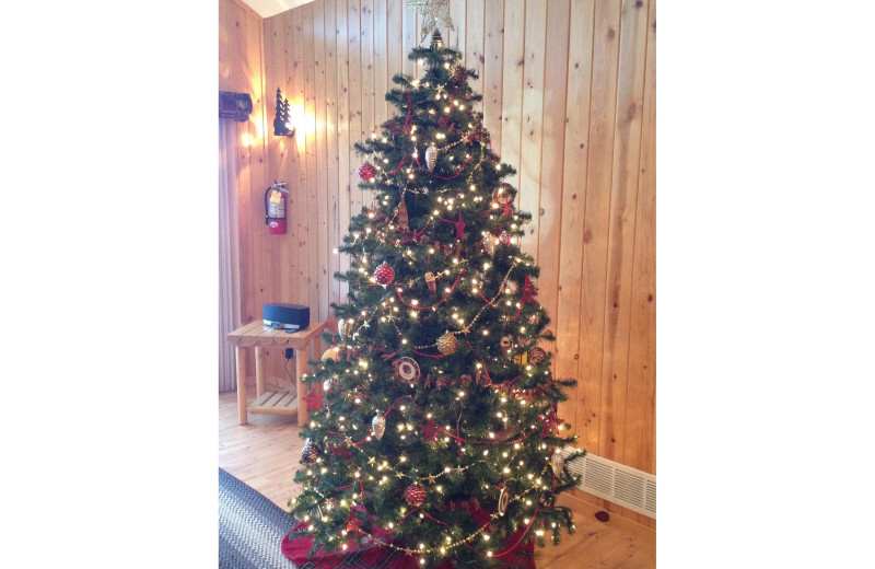 Christmas tree at Timber Trails Resort.