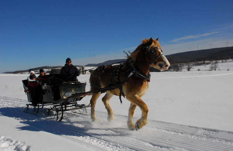 Sleigh rides at Deep Creek Vacations.