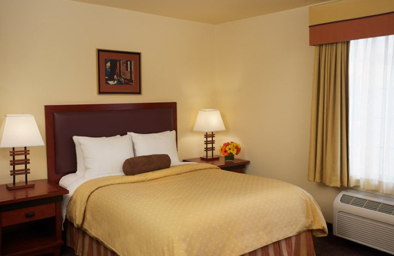 Guest room at Larkspur Landing.