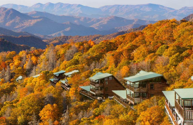 Exterior view of Natural Retreats Great Smoky Mountains.