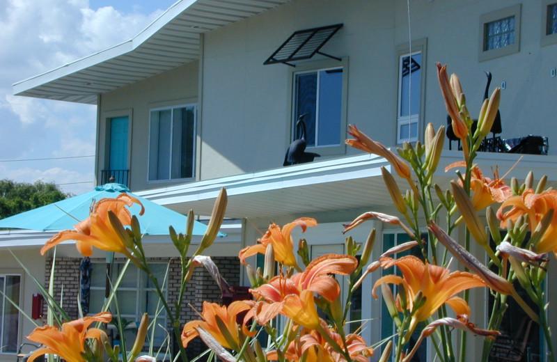 Exterior view of Miami Motel.
