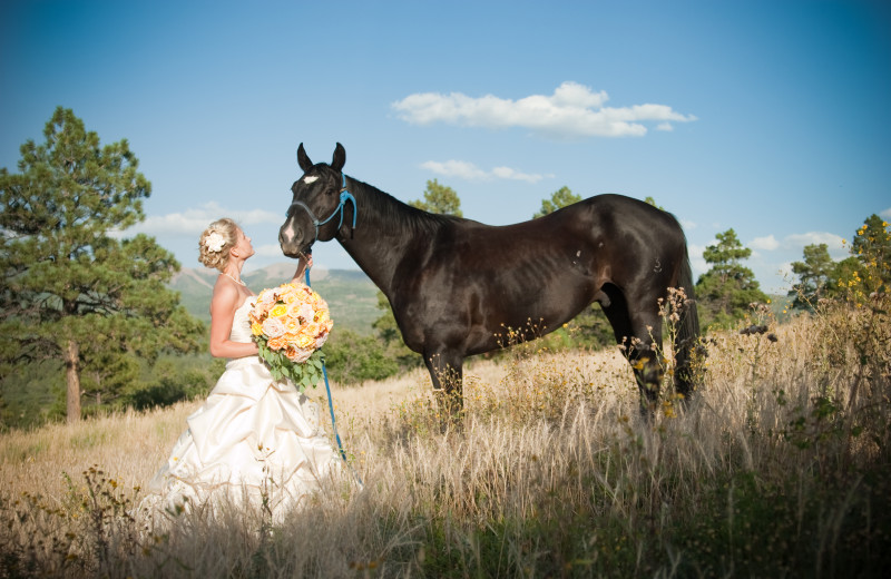 Weddings at Echo Basin Cabin And RV Resort.