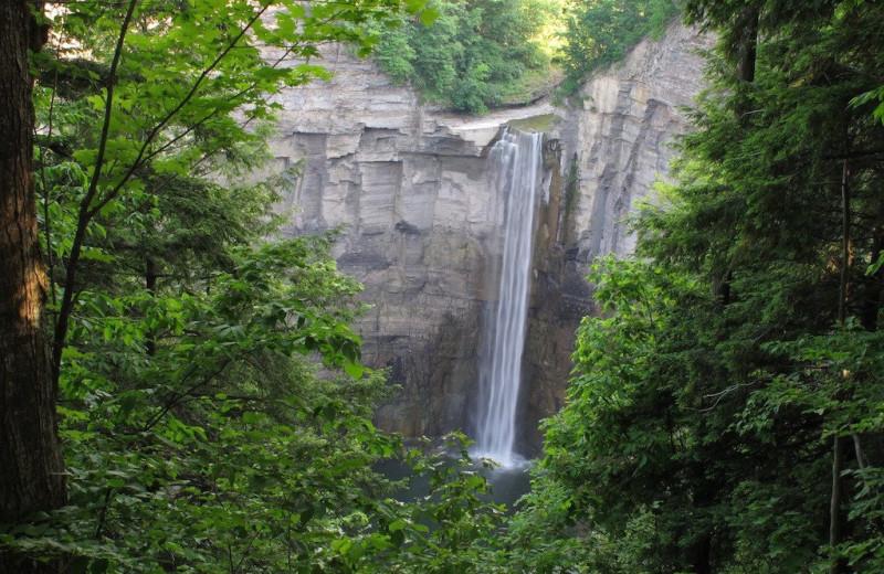 Waterfall near Juniper Hill B&B.