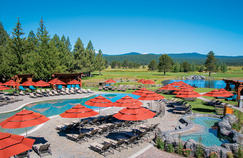 The Cove Pool features a zero-entry pool, hot tub, water slide, cabanas and The Spotted Frog restaurant and bar.