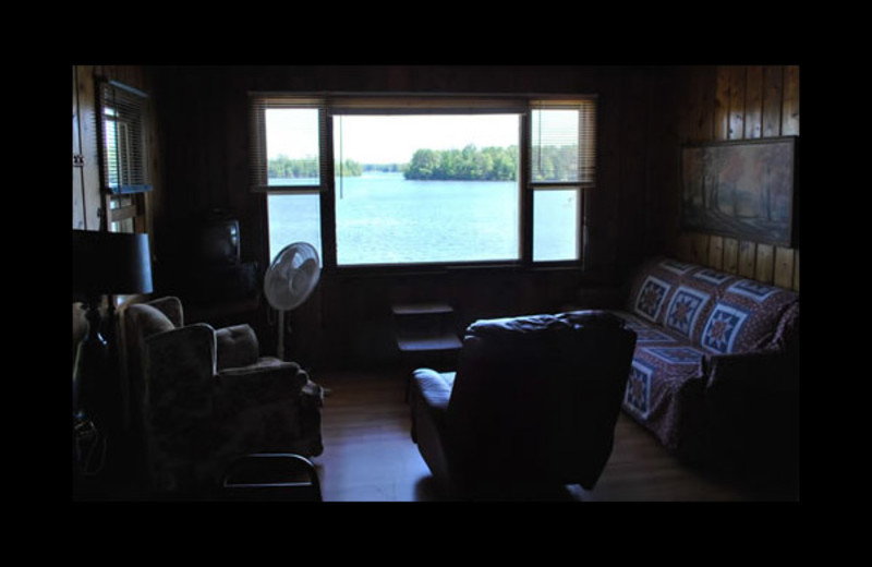 Cabin living room at Reiske's Island View Resort.