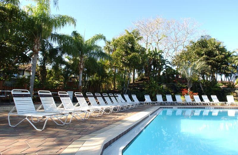 Outdoor Pool at Park Shore Resort