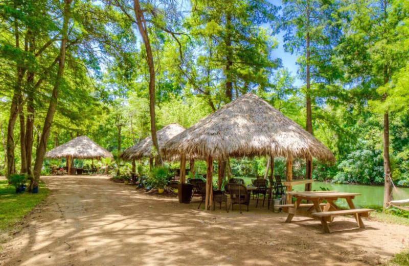 Sons Island At Lake Placid Seguin Tx Resort Reviews