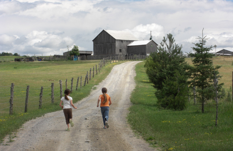 The farm at Elmhirst's Resort.
