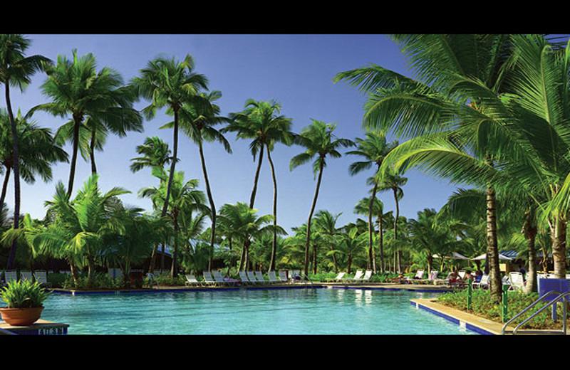 Outdoor pool at Hyatt Hacienda del Mar, A Hyatt Vacation Club Resort.