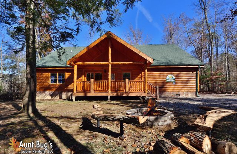 Pigeon Forge Vacation Rentals Cabin Splash N Play 524 Aunt