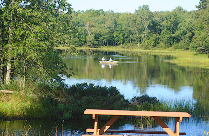 Lake view at Wolf's Eagle Lodge Resort & Campground.