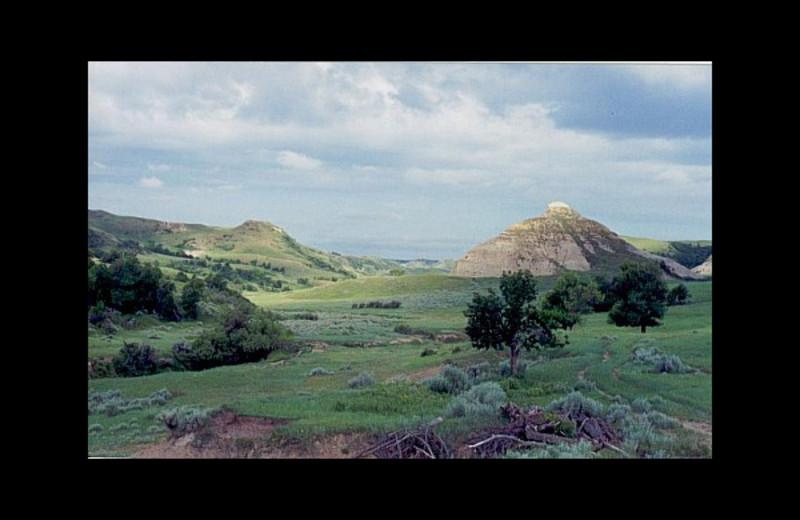 Grounds at Naard Creek Ranch.