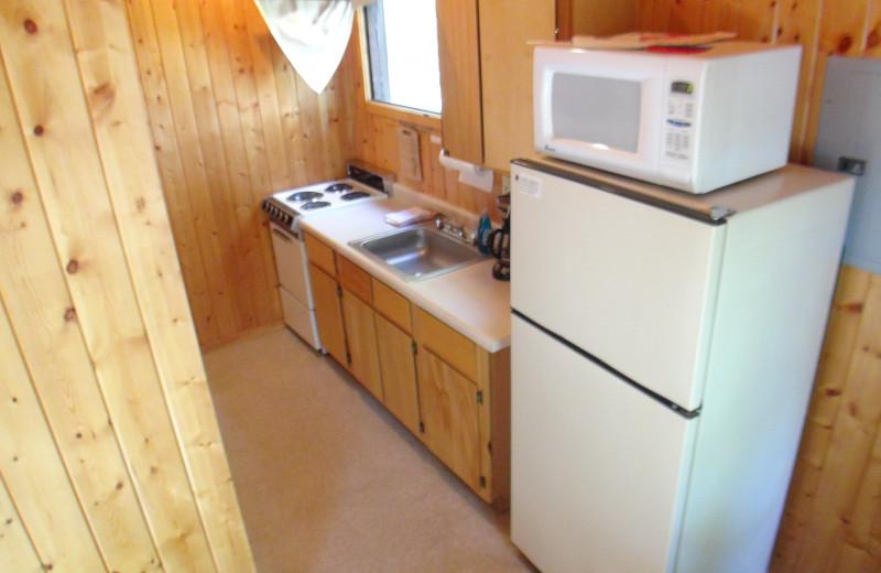Cabin kitchen at Fair Hills Resort.