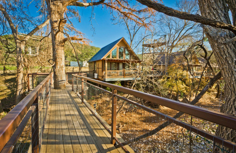 Boardwalk at River Road Treehouses.