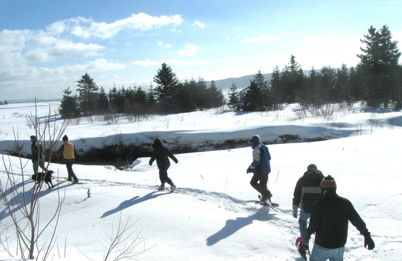 Snowshoeing at Cabot Shores Wilderness Resort.