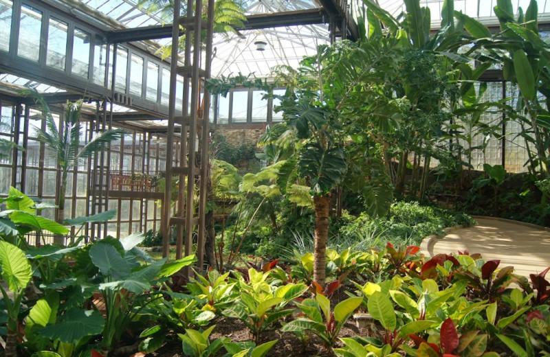 Gardens at Callaway Gardens.
