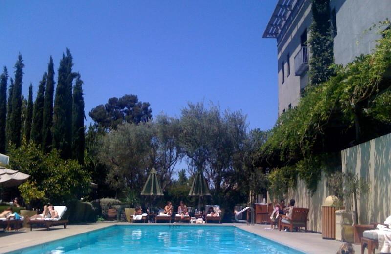 Outdoor pool at Hotel Healdsburg.