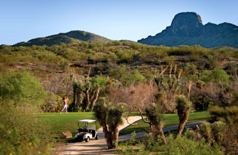 Scenic view at Rancho De Los Caballeros.