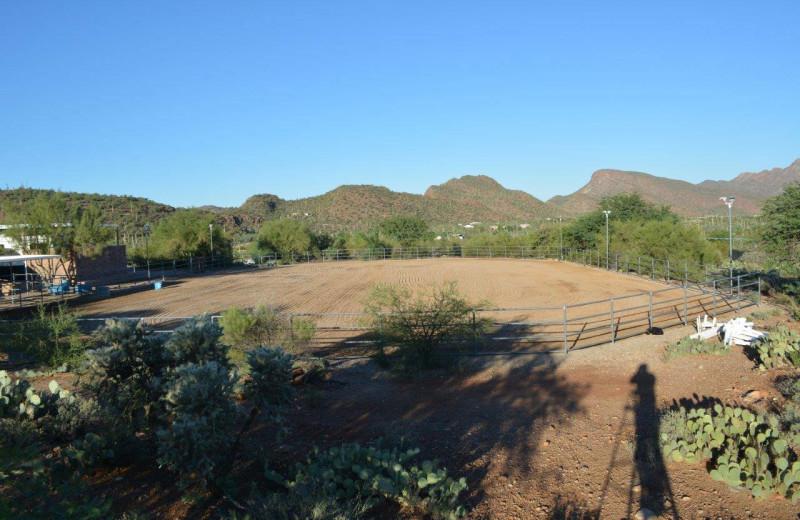 Exterior at Rocking M Ranch.