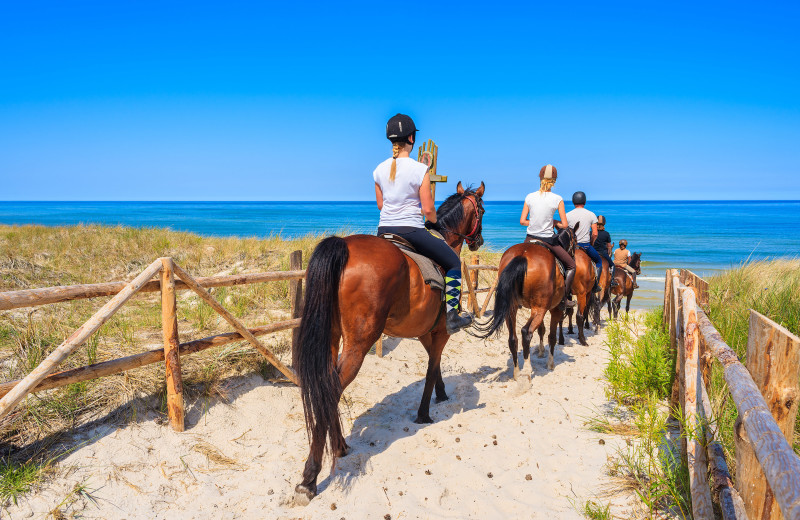 Horseback riding on the beach at Amelia Rentals and Management Services.