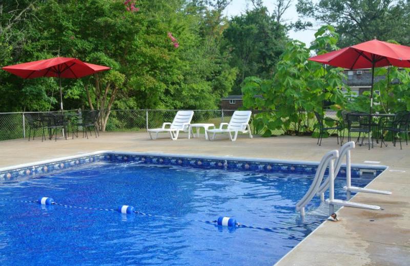Outdoor pool at Mansard Island Resort & Marina.