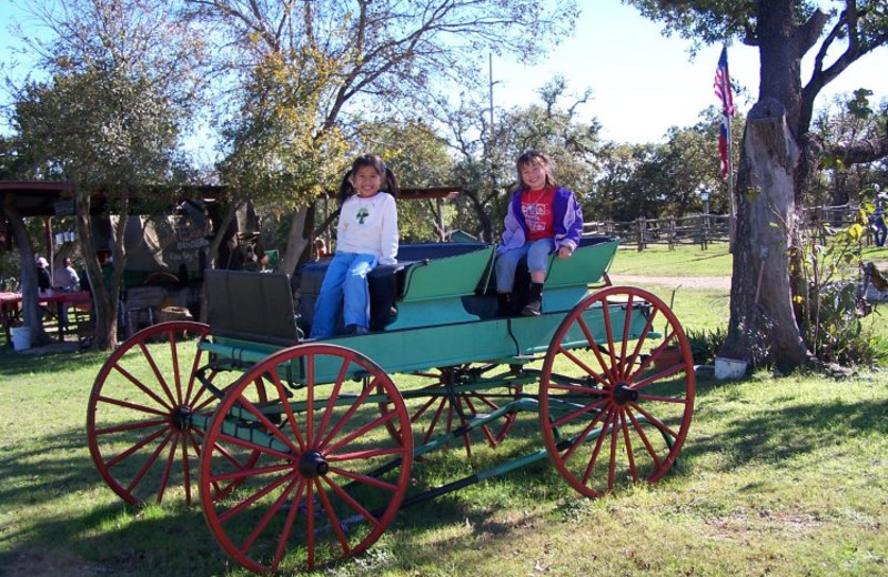 Kids in wagon at Twin Elm Ranch.