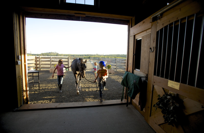 Horseback riding near Seabrook Cottage Rentals.