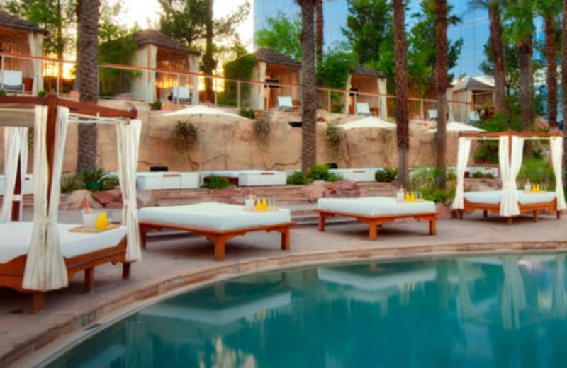 Outdoor Pool at Hard Rock Hotel