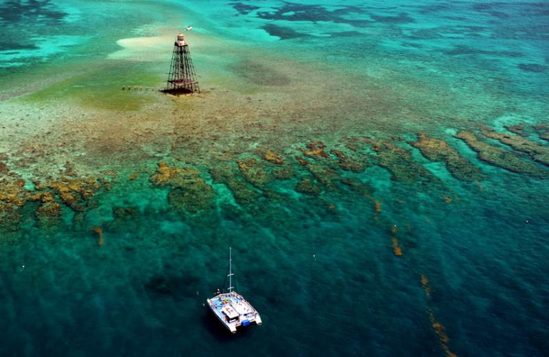 Snorkeling at The Inn at Key West.