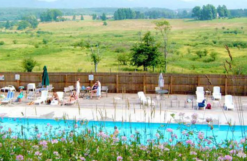 Outdoor pool at Black Bear Resort.