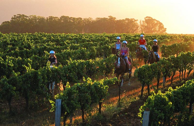 Horseback riding at Hunter Valley Resort.