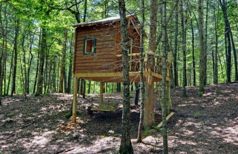 Children's tree house at Southern Comfort Cabin Rentals.