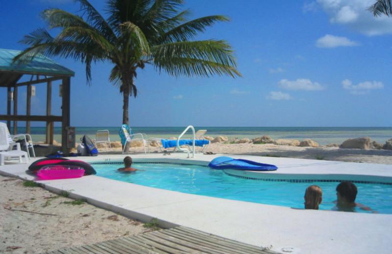 Outdoor pool at Bonefish Resort.