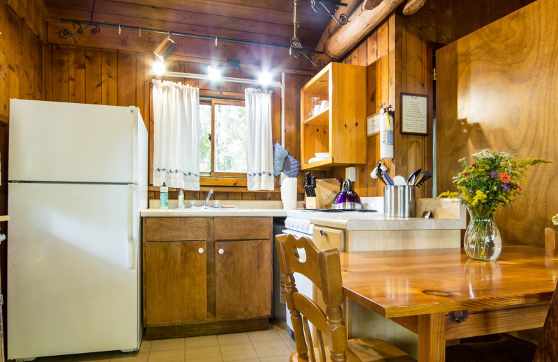 Cabin kitchen at Montfair Resort Farm.