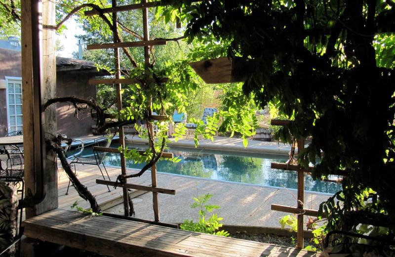 Outdoor pool at Sarabande Bed & Breakfast.