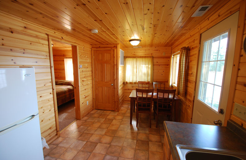 Cabin kitchen at Birch Forest Lodge.