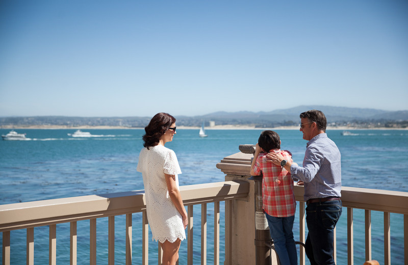 Whale watching at Monterey Plaza Hotel & Spa.