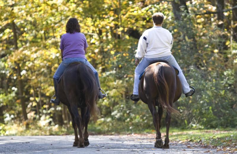 Horseback riding at Johnny Seesaw's.