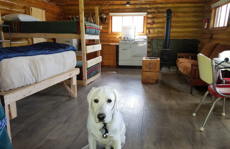 Cabin interior at The Alaska Adventure Company.