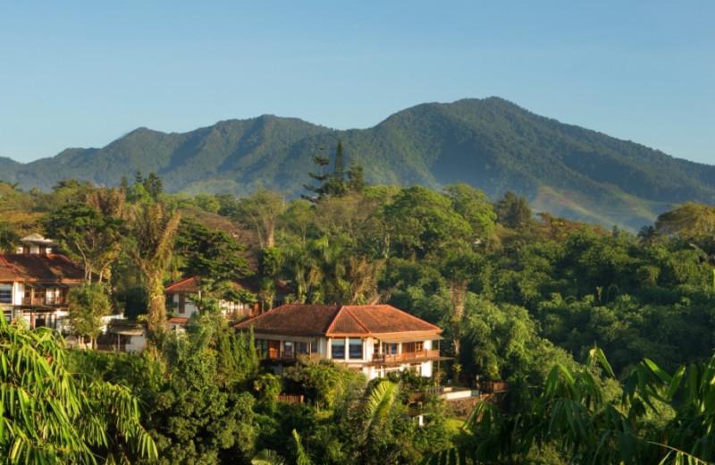 Exterior view of Novus Puncak Resort.