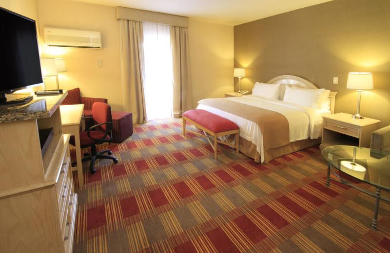 Guest room at Holiday Inn Monclova.